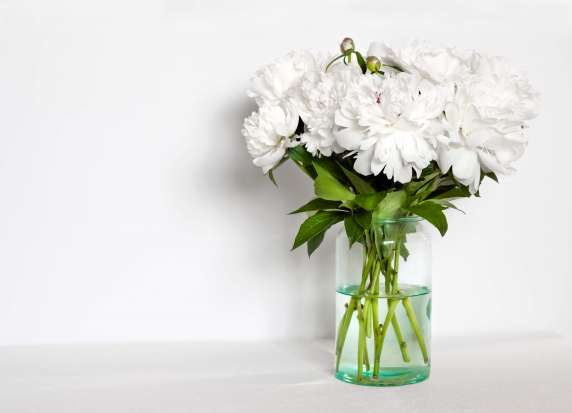 rochester cremation services flowers in vase